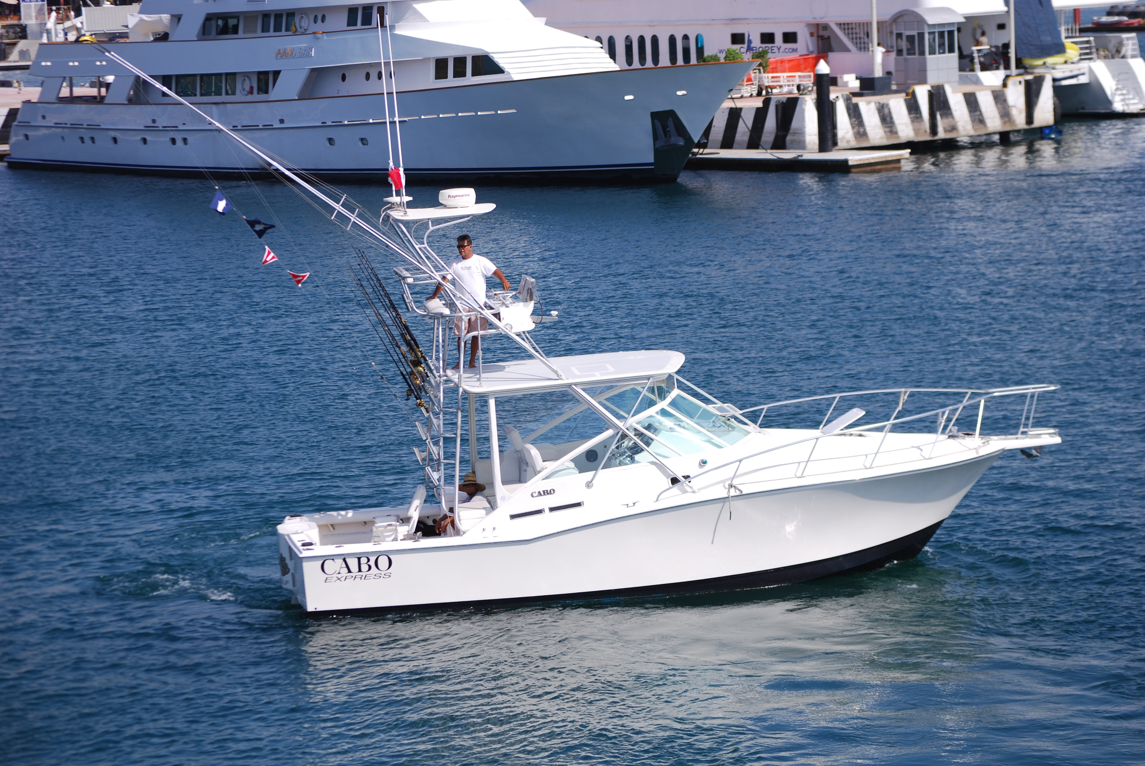 Cabo san lucas fishing for Cabo san lucas fishing charters prices